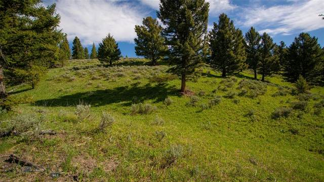 TBD Appaloosa/Pessl Road, Big Sky, MT 59716 (MLS #359330) :: Black Diamond Montana