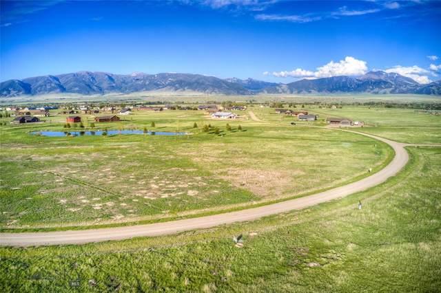 25 Sky View Drive, Ennis, MT 59729 (MLS #359399) :: Carr Montana Real Estate