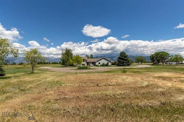 3705 Nelson Road, Bozeman, MT 59718 (MLS #359884) :: Black Diamond Montana