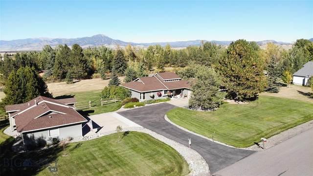 6911 Bristol Lane, Bozeman, MT 59715 (MLS #360563) :: Hart Real Estate Solutions