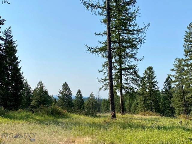 300 Mccaffery Road, Bigfork, MT 59911 (MLS #360911) :: Carr Montana Real Estate