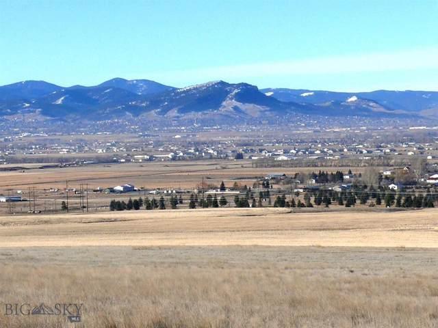 TBD Lake Helena Drive, Helena, MT 59602 (MLS #361012) :: Black Diamond Montana
