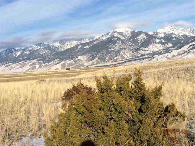 lot 1 Cowboy Lake Road, Pray, MT 59065 (MLS #203773) :: Black Diamond Montana