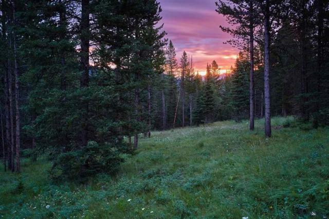 TBD Great Horn Road, Lot 3A, Big Sky, MT 59716 (MLS #206983) :: Hart Real Estate Solutions