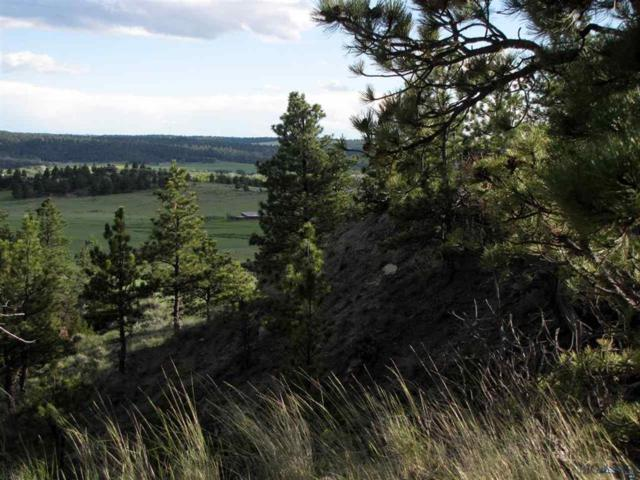 68 Snowflake Road, Roundup, MT 59072 (MLS #216084) :: Black Diamond Montana