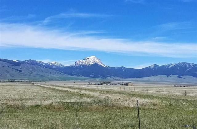 Lot 1 Lonesome Dove S27, Cameron, MT 59720 (MLS #220823) :: Black Diamond Montana