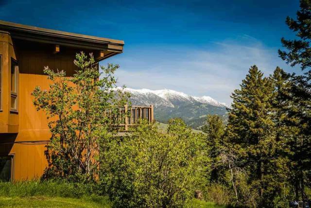 14541 Kelly Canyon, Bozeman, MT 59715 (MLS #220838) :: Black Diamond Montana