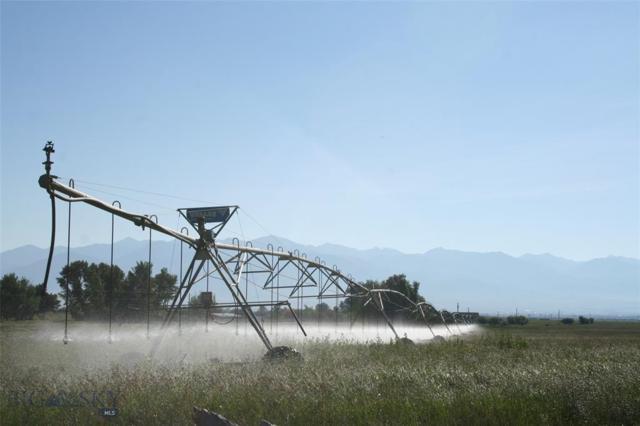 98 Balkovetz Lane, Twin Bridges, MT 59754 (MLS #328882) :: Montana Life Real Estate