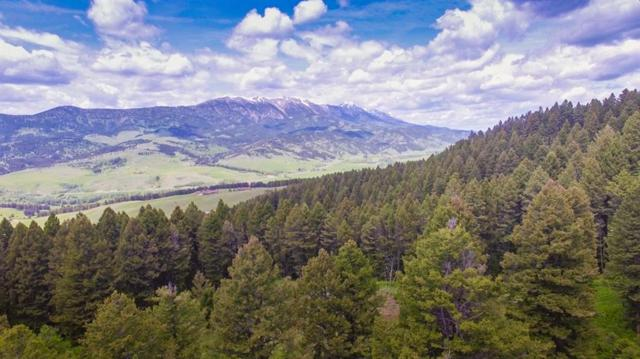 TD Bridger Woods, Bozeman, MT 59715 (MLS #329348) :: Hart Real Estate Solutions