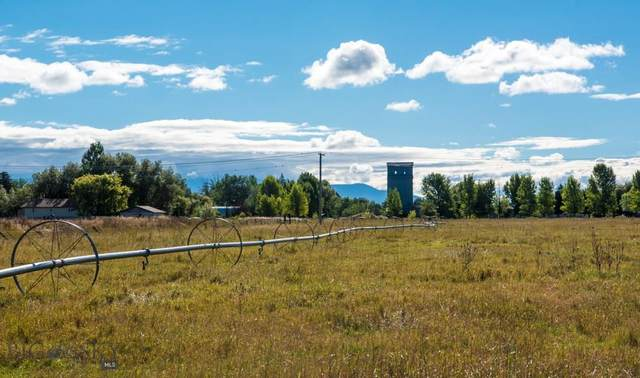 TBD Wooden Shoe Road, Manhattan, MT 59741 (MLS #329735) :: Montana Life Real Estate