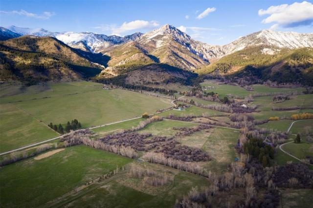 8081 Springhill Community Road E, Belgrade, MT 59714 (MLS #331317) :: Black Diamond Montana