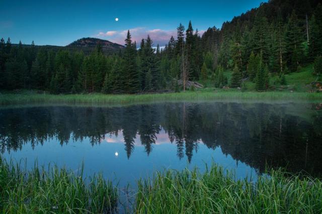 Lot 7 Bear Paw Ponds, Big Sky, MT 59716 (MLS #332477) :: Hart Real Estate Solutions