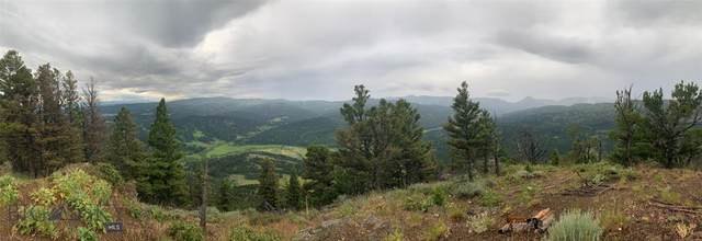 Lot 3 Battle Ridge Ranch, Bozeman, MT 59715 (MLS #346428) :: L&K Real Estate