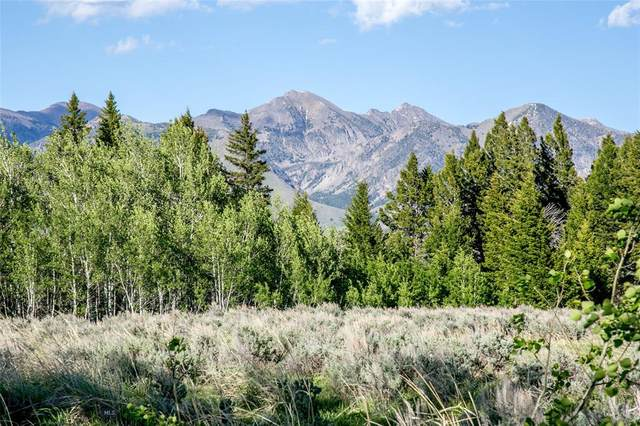 Lot 34 Sun West Ranch, Cameron, MT 59720 (MLS #349427) :: Black Diamond Montana