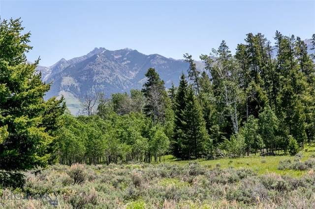 Lot 40 Sun West Ranch, Cameron, MT 59720 (MLS #350399) :: L&K Real Estate