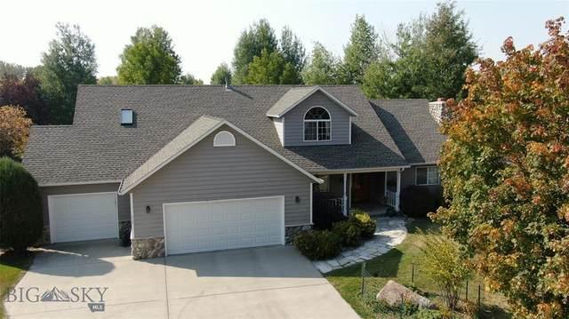 3120 Augusta Drive, Bozeman, MT 59715 (MLS #350747) :: Montana Home Team