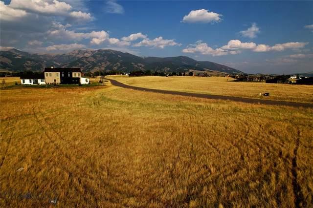 TBD Cold Smoke Drive, Bozeman, MT 59715 (MLS #361092) :: Black Diamond Montana
