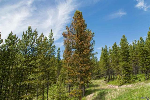 Lot 119 Old Barn Road, Big Sky, MT 59716 (MLS #209905) :: Black Diamond Montana