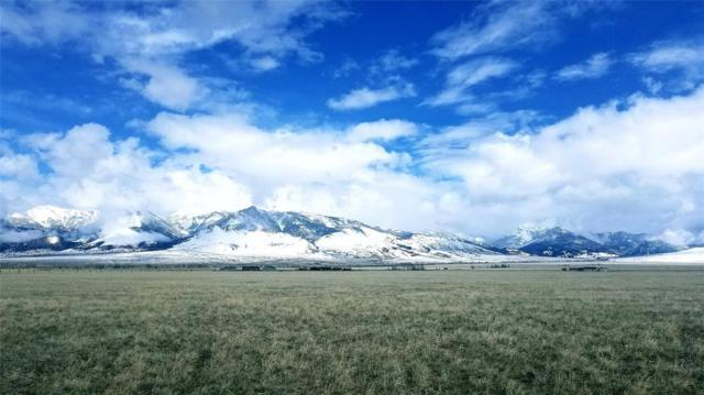 Lot 22 Lonesome Dove Ranch, Cameron, MT 59720 (MLS #220297) :: Black Diamond Montana