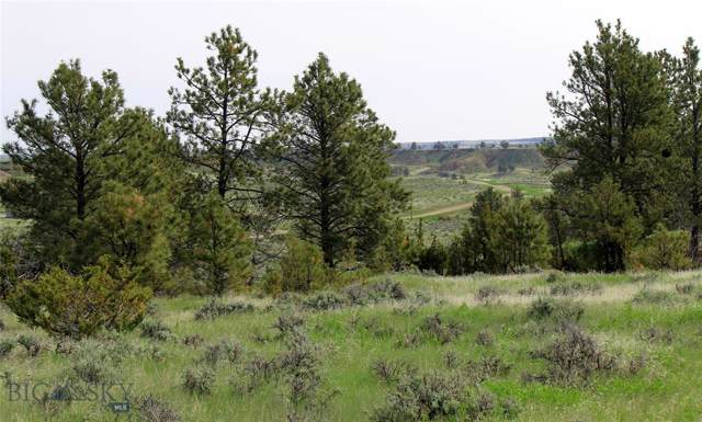 tbd Snowflake Road, Roundup, MT 59072 (MLS #324132) :: Black Diamond Montana