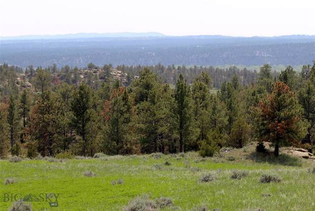 tbd Airport Road, Roundup, MT 59072 (MLS #329782) :: Black Diamond Montana