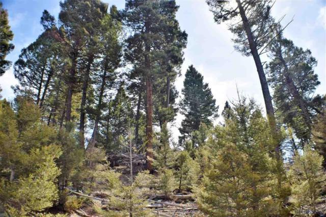 LOT 127 Aspen Valley Ranch Sub, Boulder, MT 59632 (MLS #214744) :: Black Diamond Montana