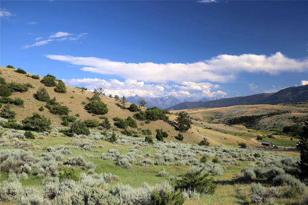 TBD Fleshman Creek Road - Photo 1