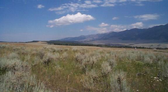 Lot 5 Buffalo Lance Ranch N, Cameron, MT 59720 (MLS #308241) :: Black Diamond Montana