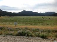Lot 53 Homestake Meadows - Photo 1