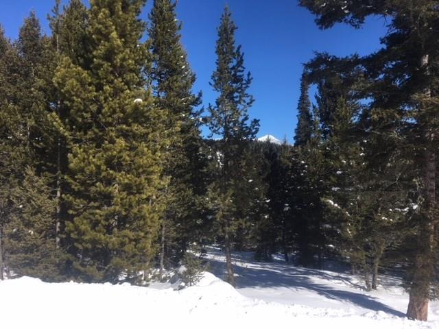 TBD Settlers Loop, Big Sky, MT 59716 (MLS #314439) :: Black Diamond Montana | Berkshire Hathaway Home Services Montana Properties