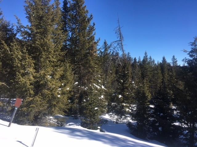 TBD Crown Butte Road, Big Sky, MT 59716 (MLS #314441) :: Black Diamond Montana | Berkshire Hathaway Home Services Montana Properties
