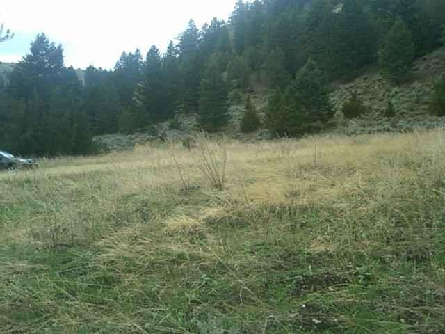 Lot 13 Ponderosa Pines Ranch, Three Forks, MT 59752 (MLS #317857) :: Black Diamond Montana | Berkshire Hathaway Home Services Montana Properties