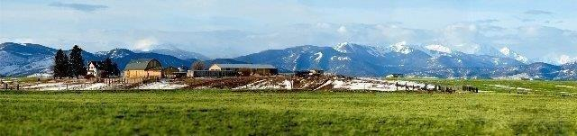 LOT 18 Black Bull Golf Community, Bozeman, MT 59718 (MLS #319154) :: Black Diamond Montana   Berkshire Hathaway Home Services Montana Properties