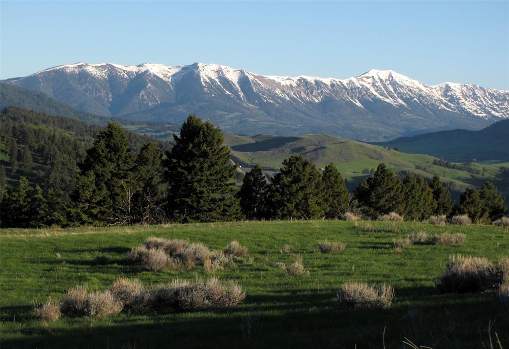 199 Elk Ridge Road - Photo 1