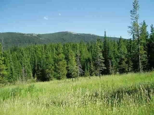 LOT 5 Falling Star, Bozeman, MT 59715 (MLS #321898) :: Black Diamond Montana