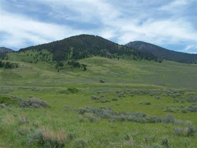 TBD Parcel 78, Cameron, MT 59720 (MLS #321989) :: Black Diamond Montana