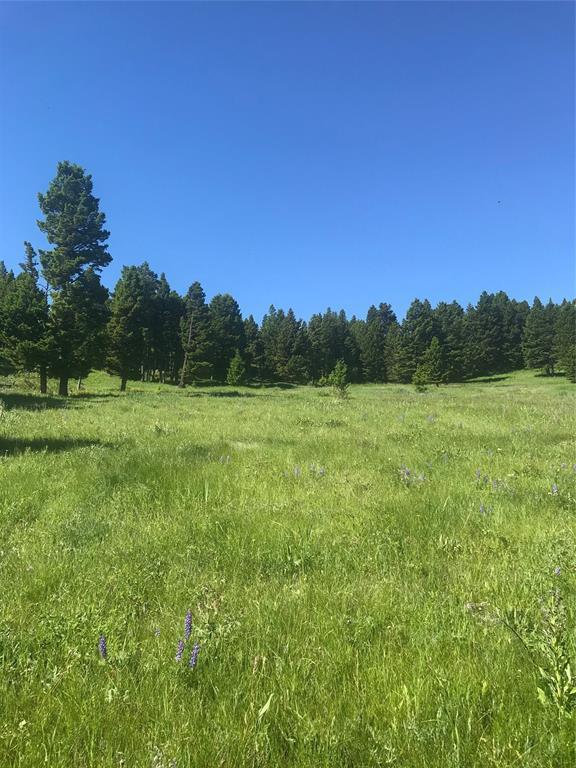 34 Livingston Peak, Livingston, MT 59047 (MLS #322289) :: Black Diamond Montana