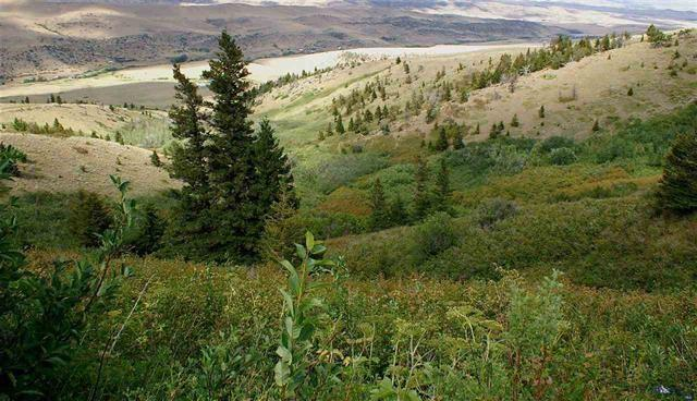 TBD Rendezvous Trail Trail, Livingston, MT 59047 (MLS #323729) :: Hart Real Estate Solutions