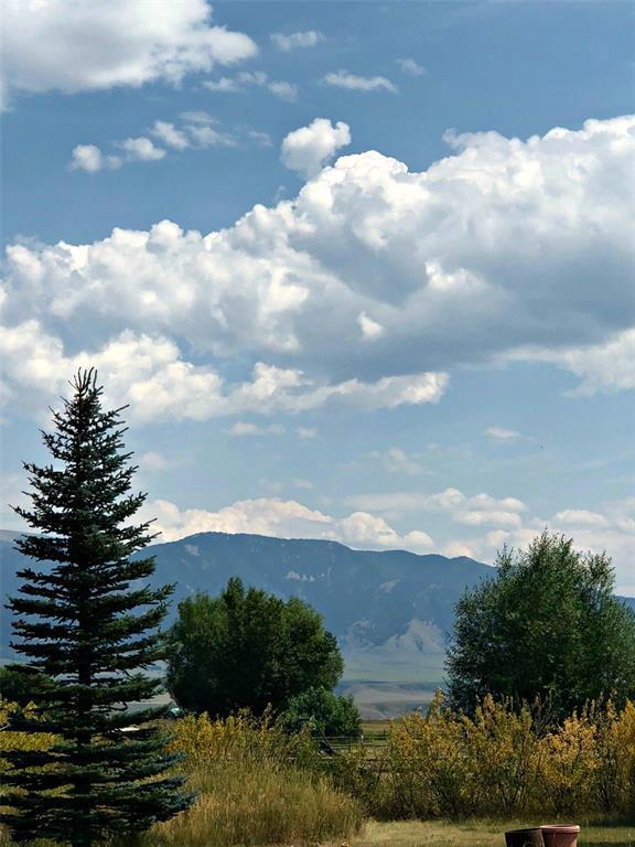 Lot 36 Troutdale II, McAllister, MT 59740 (MLS #324068) :: Black Diamond Montana