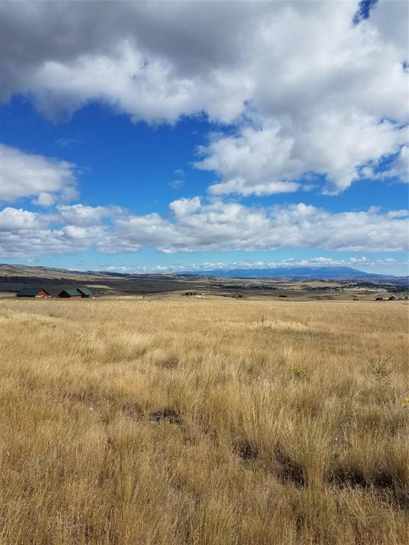 TBD Buffalo Trail, Livingston, MT 59047 (MLS #326039) :: Black Diamond Montana