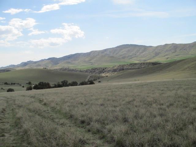 Tract 787 Miller Canyon Road, Three Forks, MT 59752 (MLS #331624) :: Black Diamond Montana
