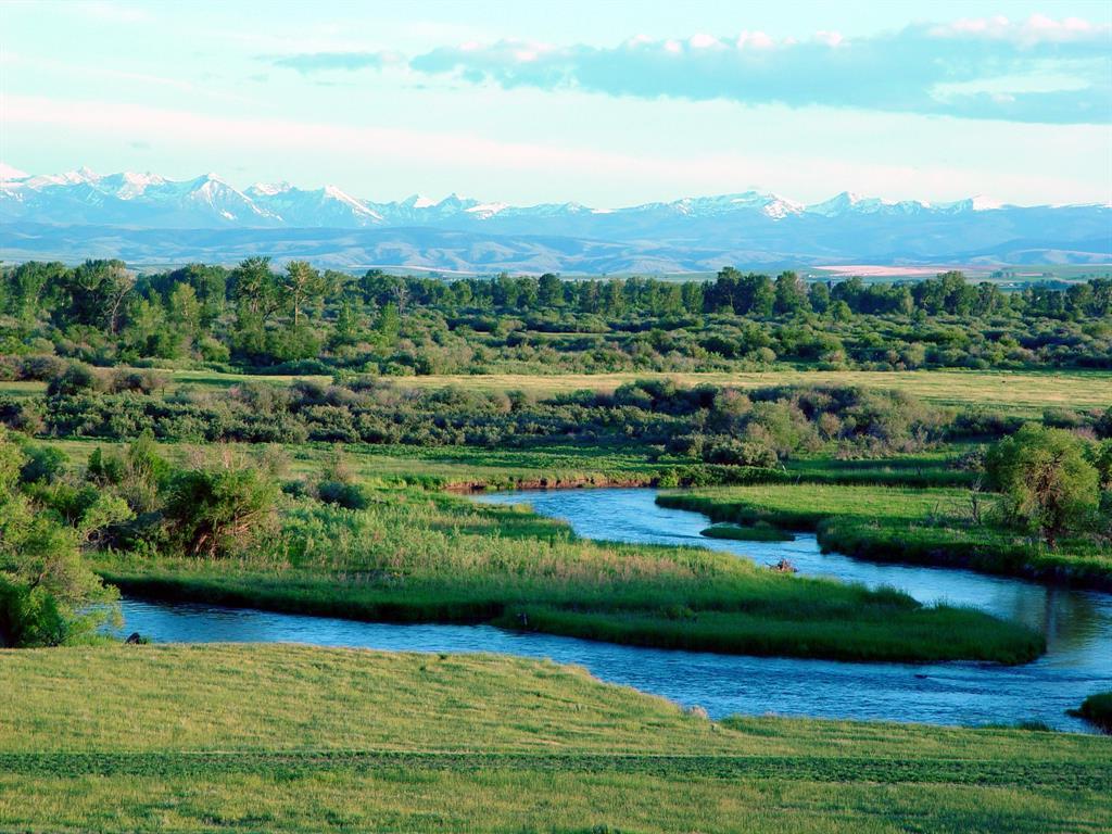 1300 Twin Rivers Cutoff - Photo 1