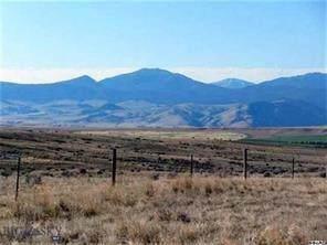 143 Sheep Camp Road, Whitehall, MT 59759 (MLS #334694) :: Black Diamond Montana