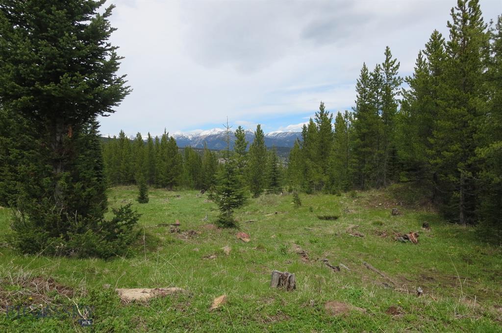 TBD Upper Promontory Road - Photo 1