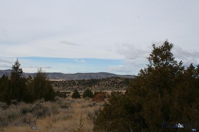 LOT 310 Pine Top Trail - Photo 1