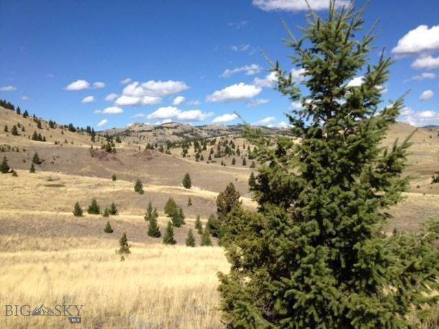 TBD Frog Pond Road, Walkerville, MT 59701 (MLS #340257) :: Black Diamond Montana
