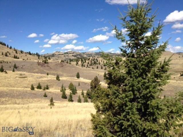TBD Frog Pond, Walkerville, MT 59701 (MLS #340454) :: Black Diamond Montana