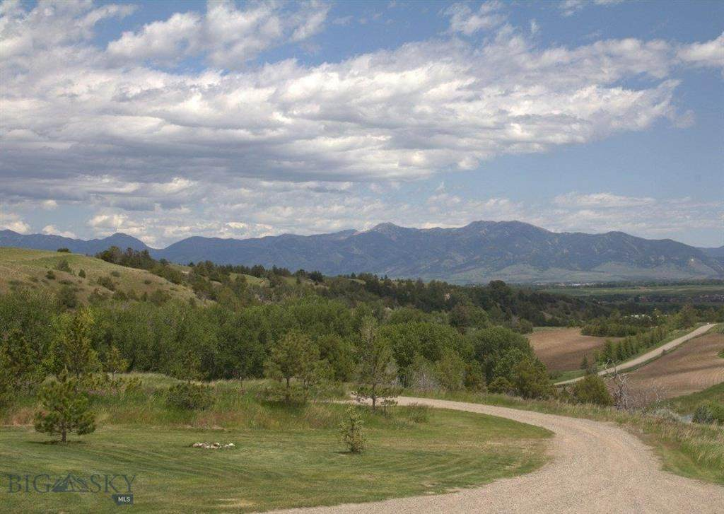 201 Sunrise Ridge Trail - Photo 1
