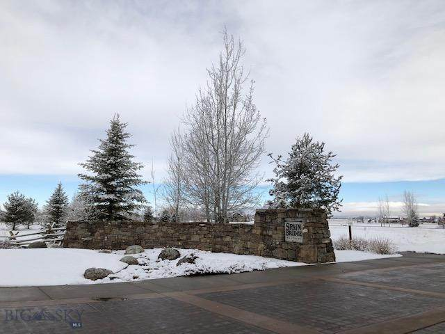 0 TBD Spain Bridge Circle Drive, Belgrade, MT 59714 (MLS #344370) :: Hart Real Estate Solutions