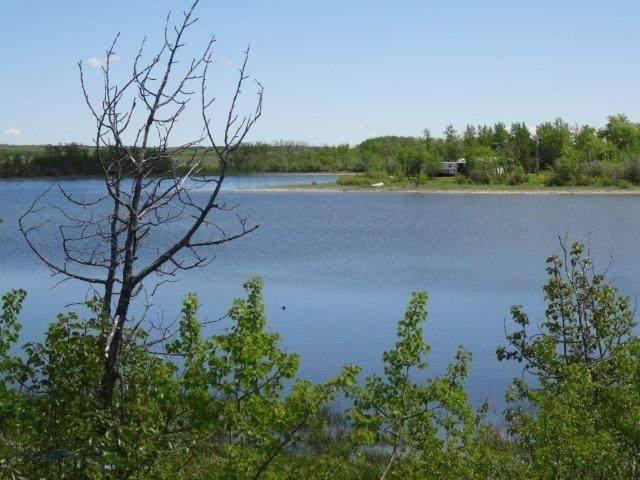 NHN W Shore Duck Lake Road - Photo 1